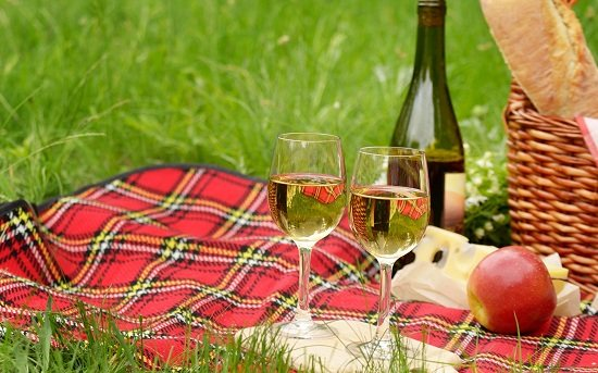 Біле вино для пікніка