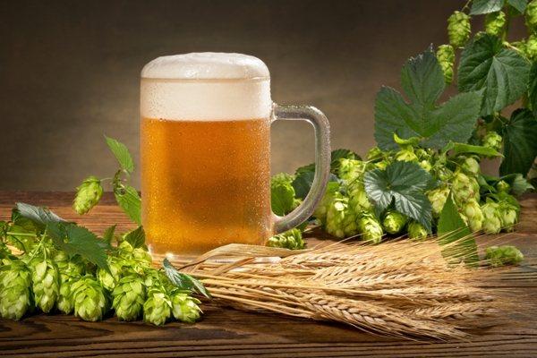 Келих пива и хміль