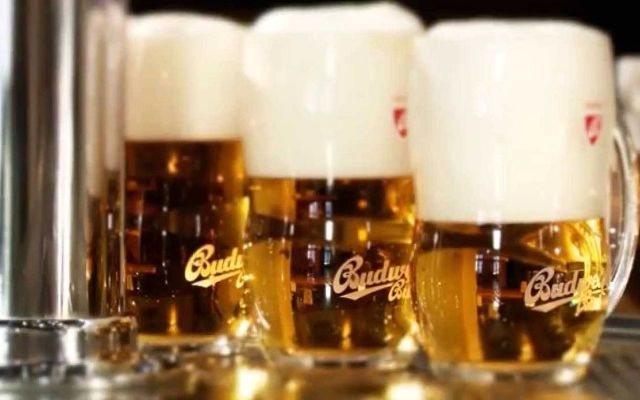 Budweiser Budvar, Чехія