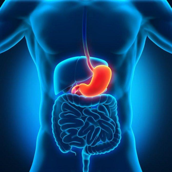 Дістрофічні и запальні Зміни в слізовій оболонці шлунка