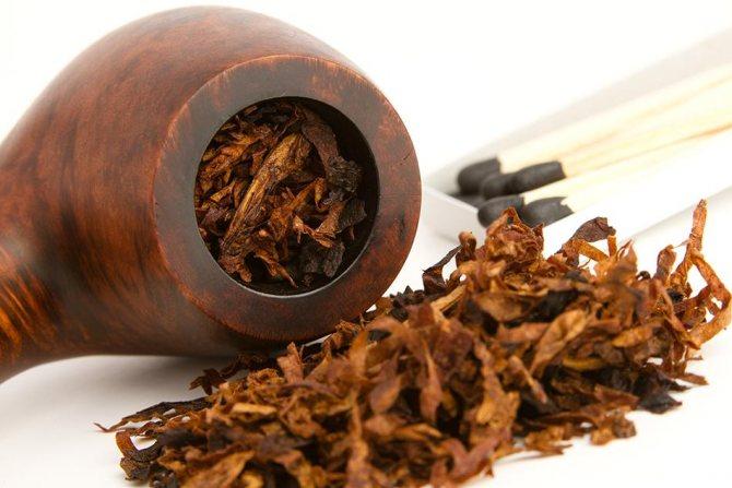 форми курильних трубок