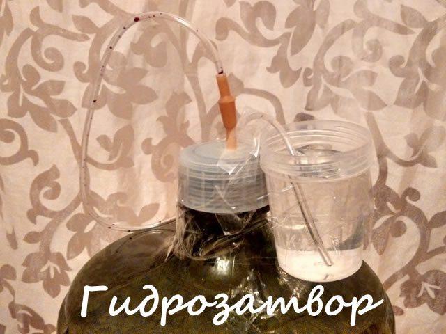 Гідрозатвор для приготування вина