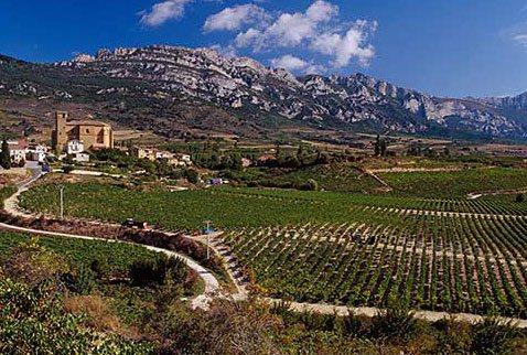 іспанське червоне вино