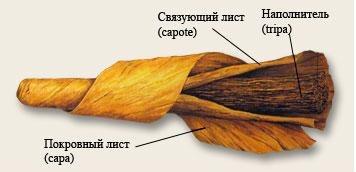 З чого складається сигара?