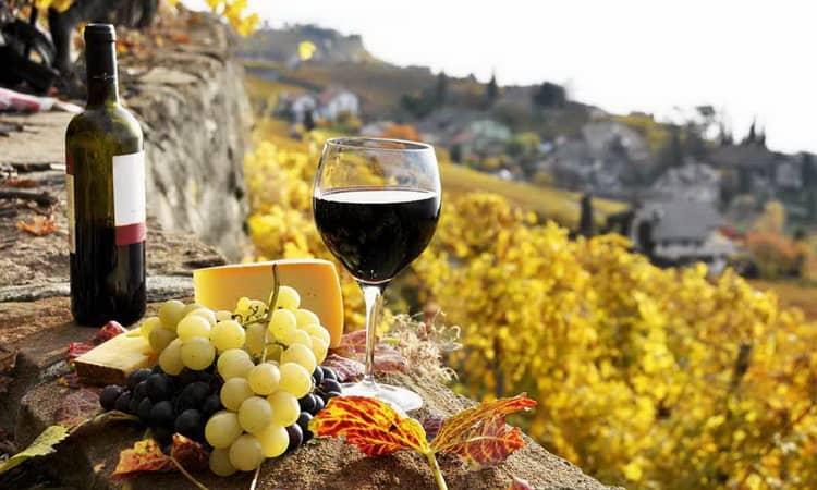 Як виготовляють іспанське червоне сухе вино