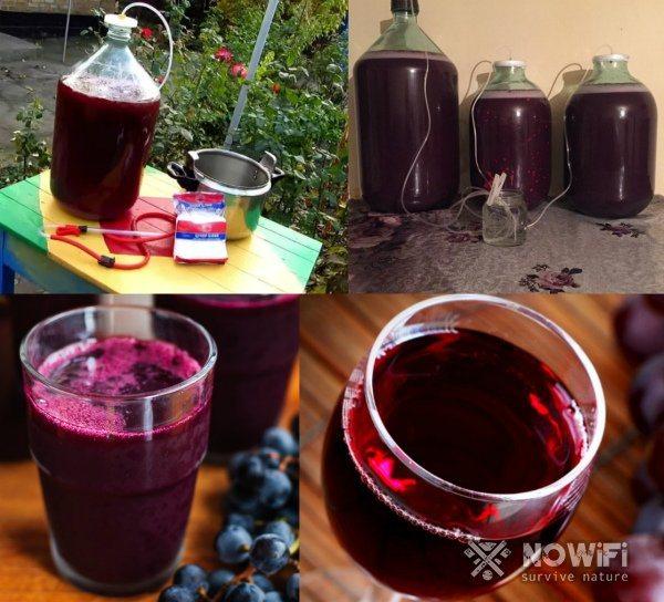 Як зробити домашнє вино
