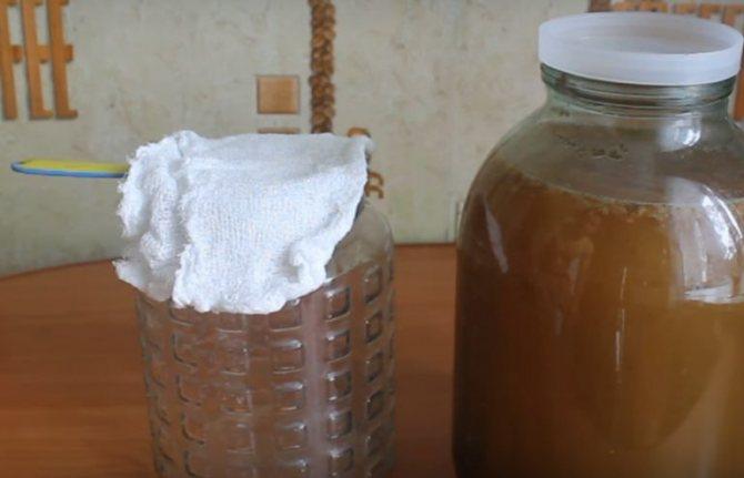 Як зробити закваску для квасу в домашніх умовах? Рецепти з дріжджами і без