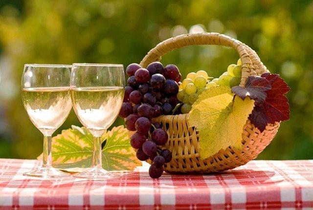 Які вина роблять в Чехії