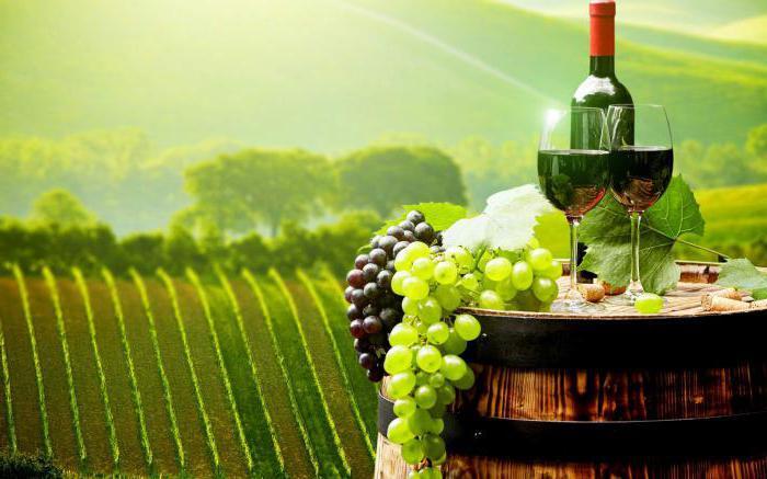 класифікація вин бордо