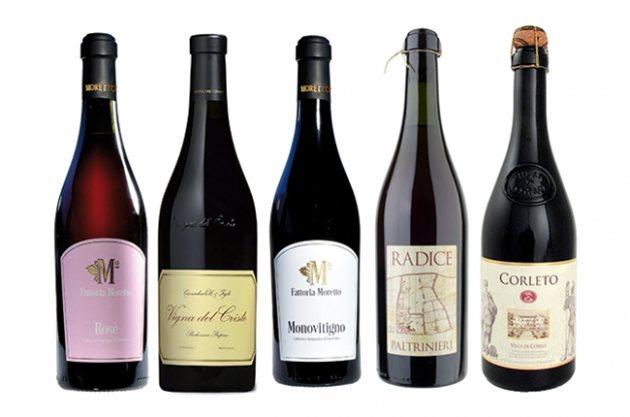 ламбруско ігрісте вино