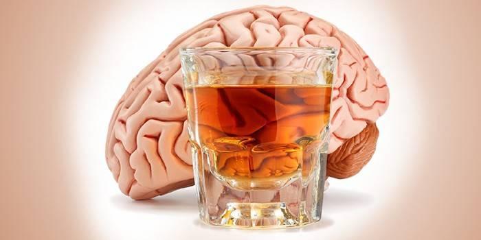 Мозок людини й чарка спиртного