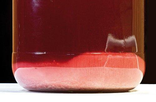 осад від ягід у вині