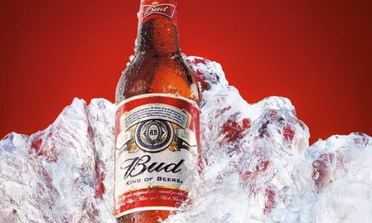 Особливості пива бад