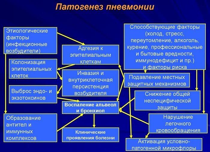 патогенез пневмонії