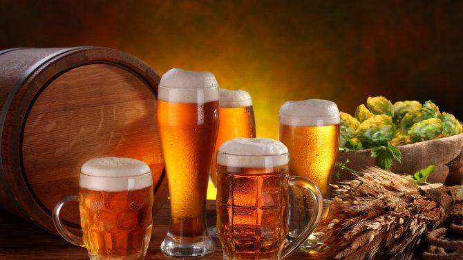 Пиво Бад и его Особливості