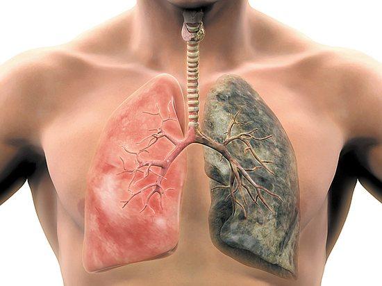 Чому ви Ніколи НЕ повінні палити даже 1 сигарету?
