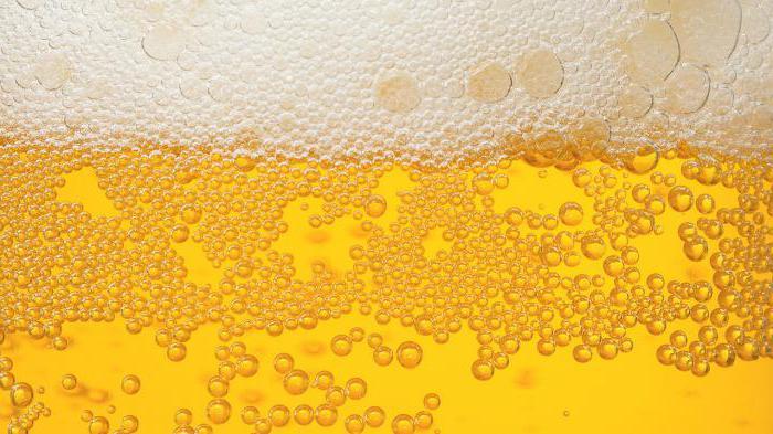 Поговоримо про пиво