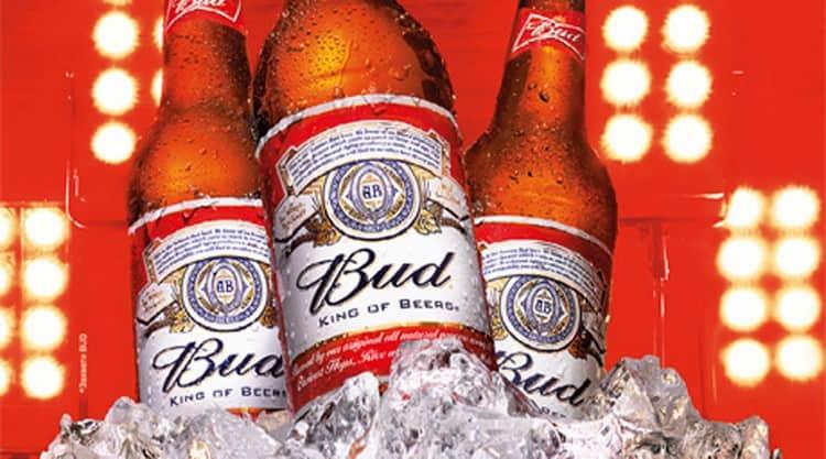 Популярним представником цього сорту пива є Бад.