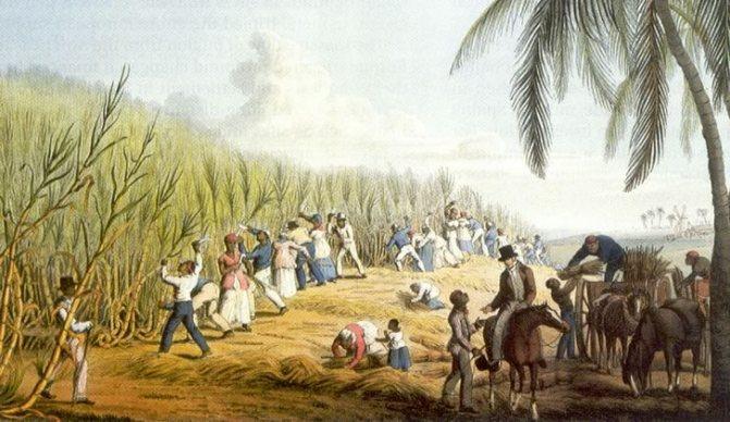 Рабство і ром