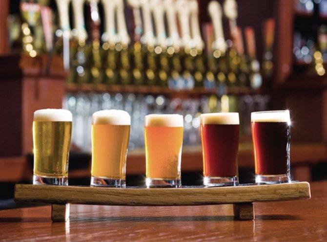 Різноманітність крафтового пива