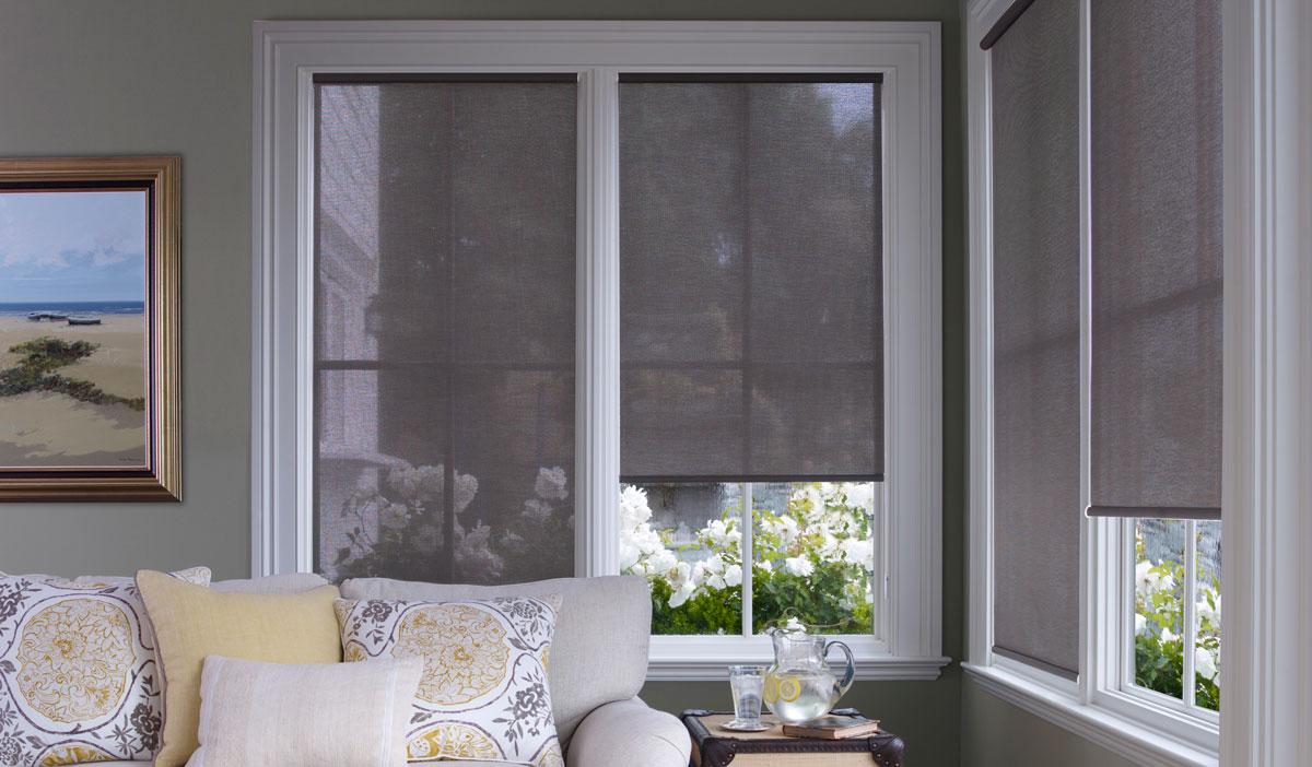 Рулонные шторы в интерьере комнаты