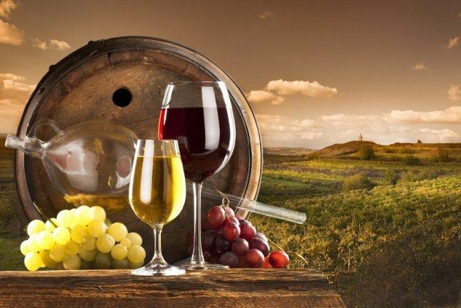 Спеціалізуватися на вині можуть не тільки виробники, пов'язаних з ним професій набагато більше