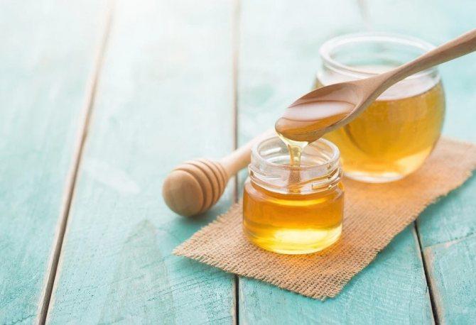 Потрійна сила: що лікує алое з медом і кагором і як правильно готувати настоянку