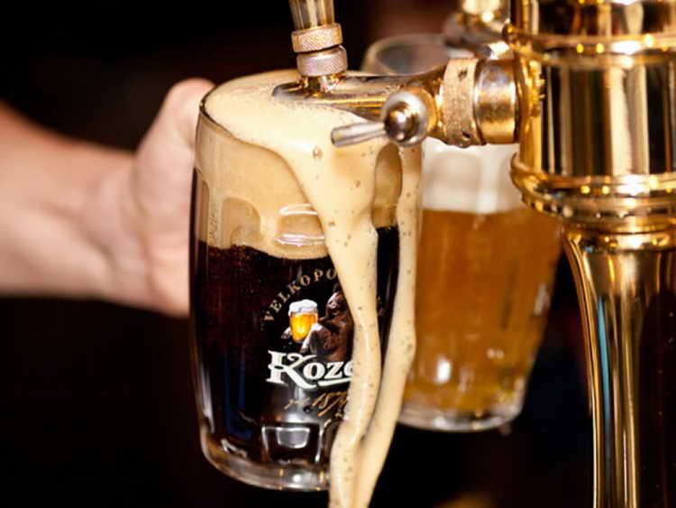 види безалкогольного пива козел
