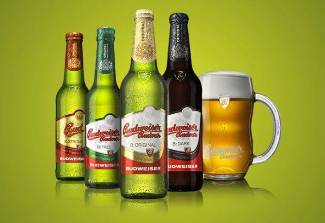 Види пива Будвайзер