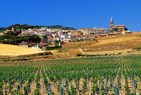 вина Испании путівник