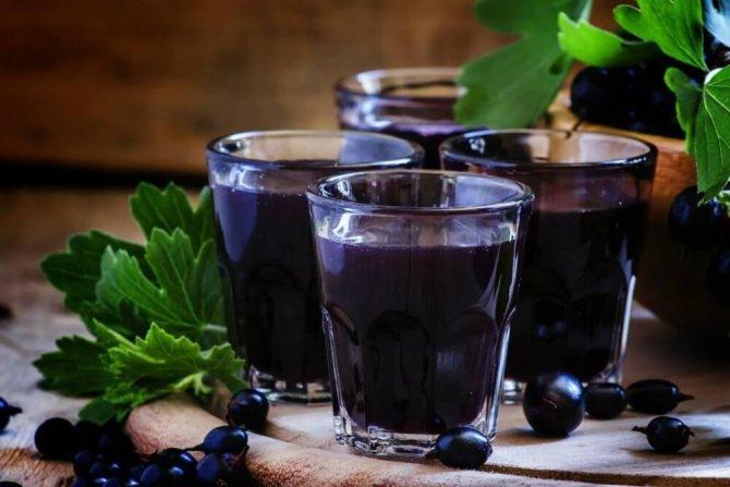 Вино із чорної смородини