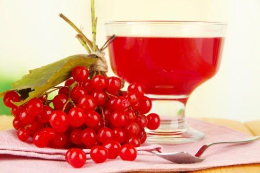 Вино в Домашніх условиях простий рецепт з калини
