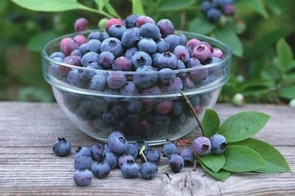 ягоди іргі