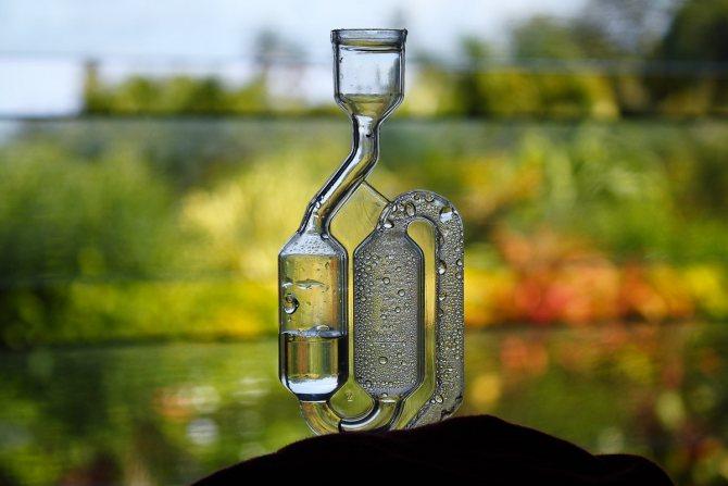 Заводський гідрозатвор для вина