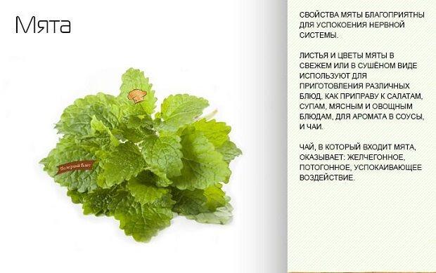 зелені листочки